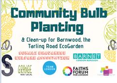 community-bulb-planting
